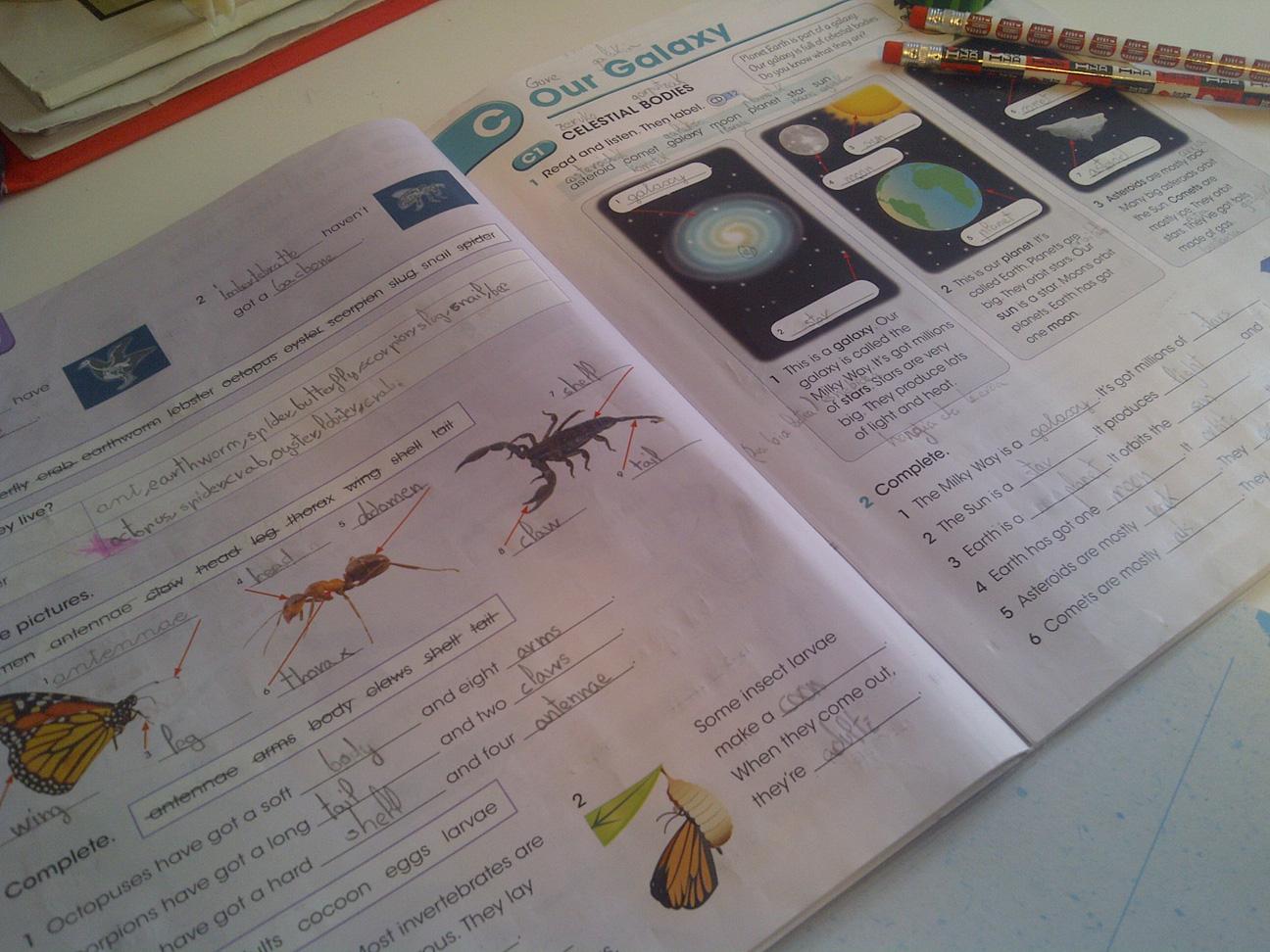 Detección y atención precoz de comportamientos disruptivos y problemas de aprendizaje