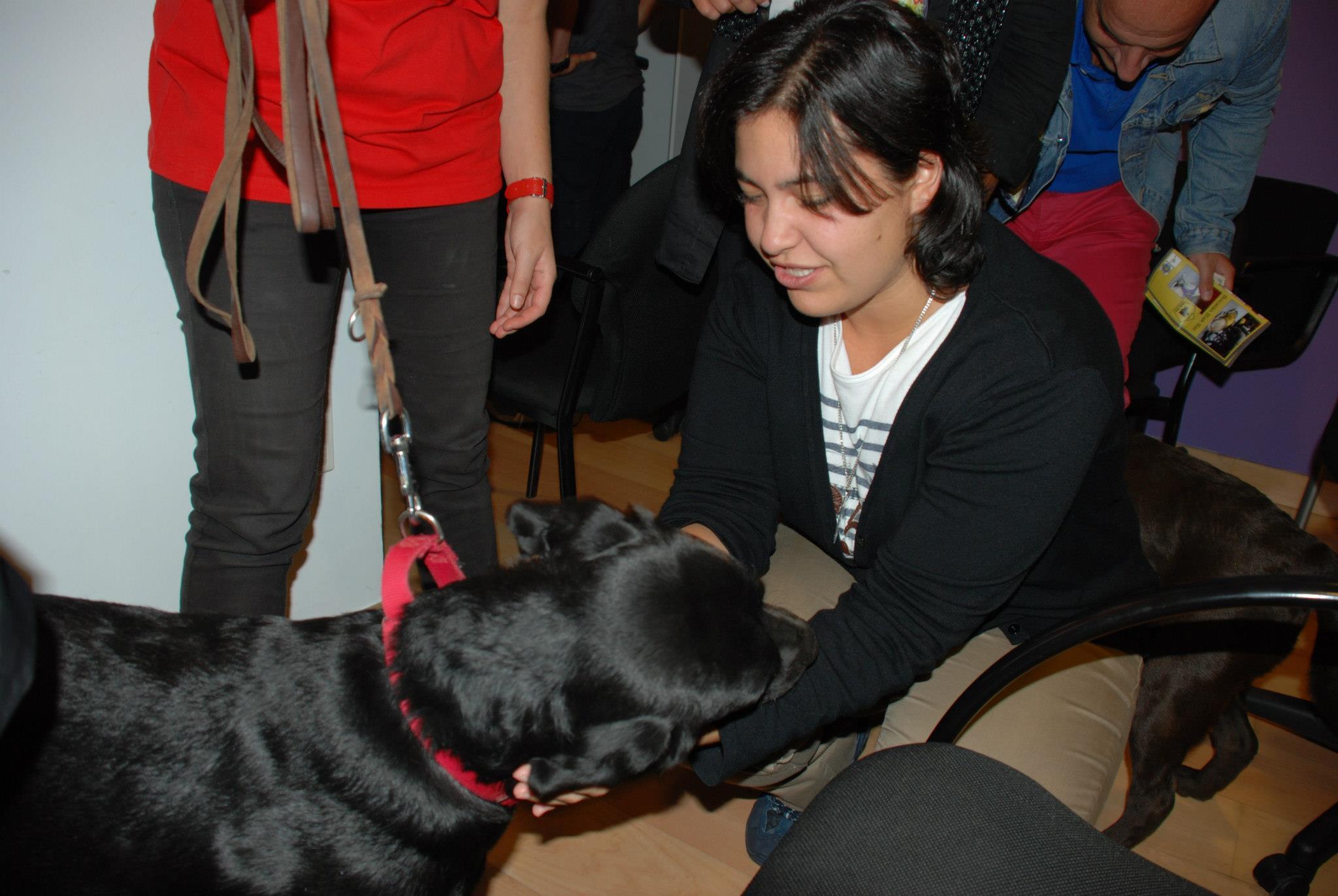 Beneficios del contacto con animales. Cada vez más estudios científicos