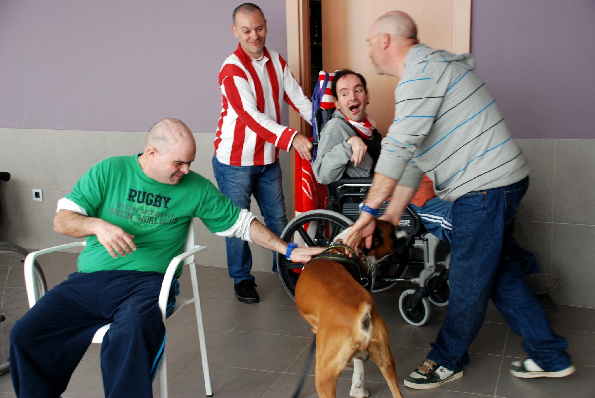 Sergio Argul, voluntario en actividades asistidas con animales