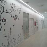 El Centro de Día de Daño Cerebral  Aita Menni de San Sebastián se traslada al Parque Zuatzu