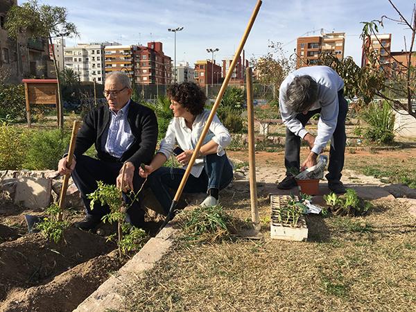 Horticultura, una actividad grupal más dentro de nuestros programas de rehabilitación